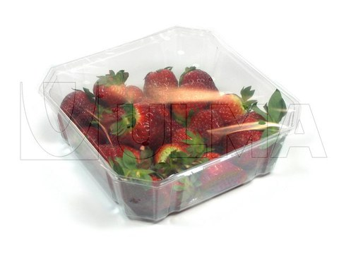Vegetable and fruit packaging solutions