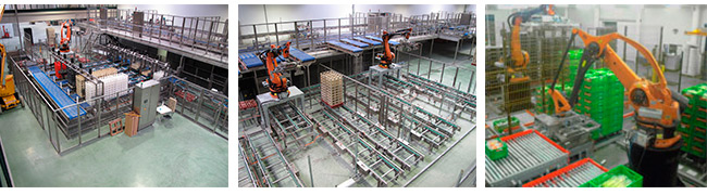Ulma robotic palletizing