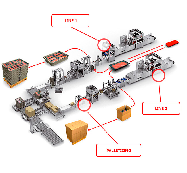 Ulma complete solution of Thermoforming Line